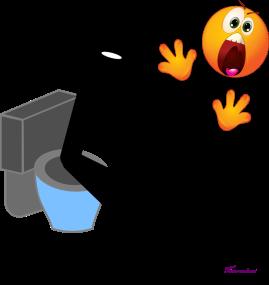 toilet urine
