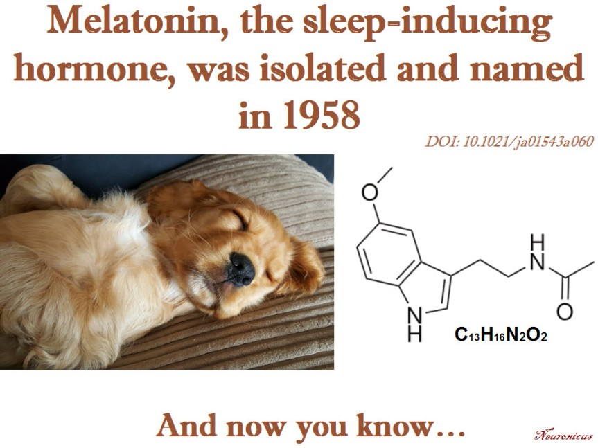 Melatonin - Copy