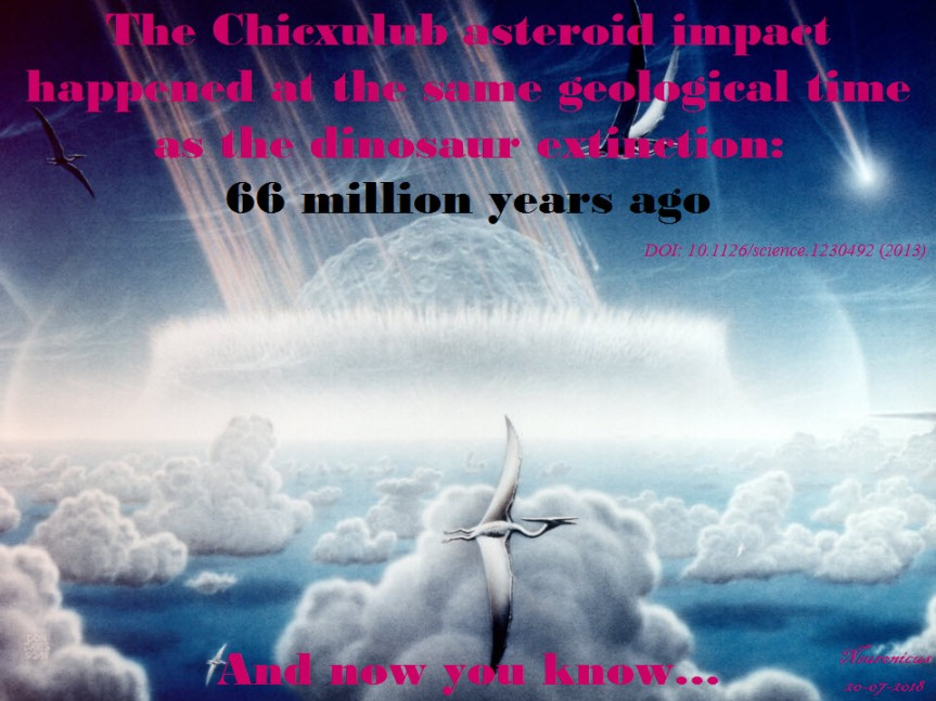 138-66 chixhulub - Copy