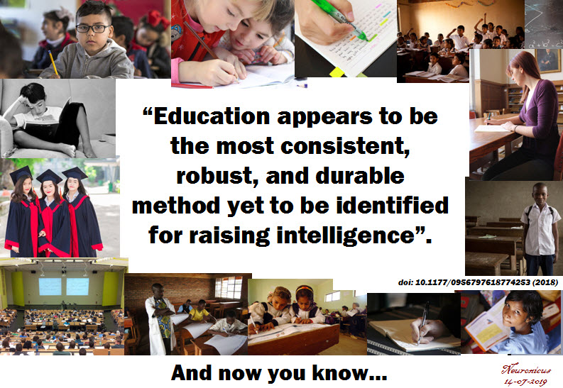 155 education and iq