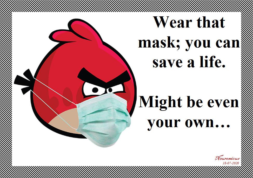 162 mask - Copy